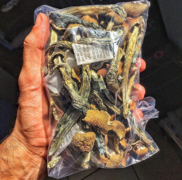 Magic mushrooms for sale